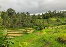 0063 Jatiluwih Rice Terraces