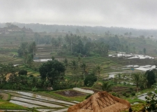 0067 Jatiluwih Rice Terraces
