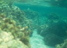 Korsika__013