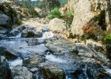 Korsika__052